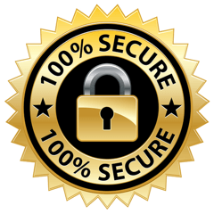 SSL secure online shopping site